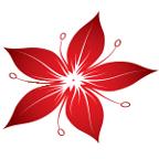 FauerWeb Online Markedsføring