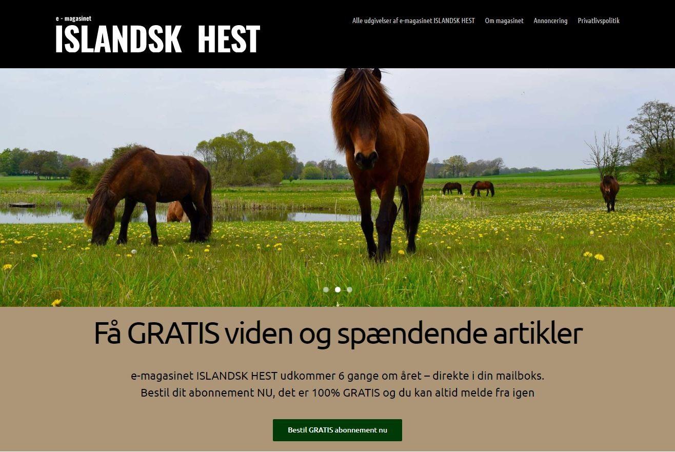 e-magasin på nyt website