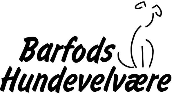 Oprindeligt logo oplæg fra kunden
